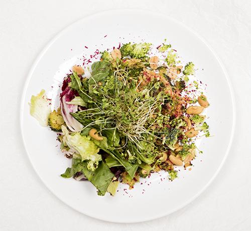 salata-up-2