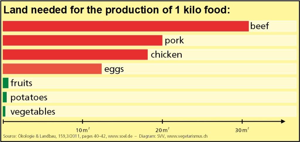 Consecinţele ecologice ale industriei creşterii animalelor