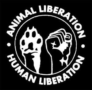 Compararea drepturilor animalelor cu mișcări pentru dreptate socială