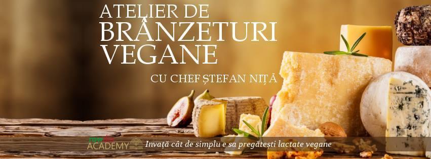 atelier-curs-branzeturi-lactate-vegane-bucuresti-stefan-nita