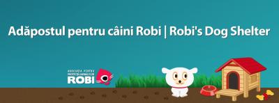 adapost-catei-robi