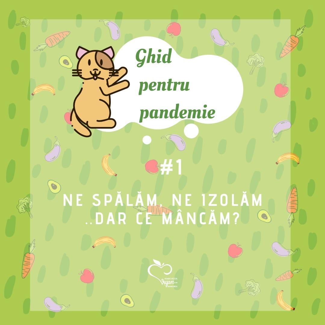 Ghid pentru pandemie #1