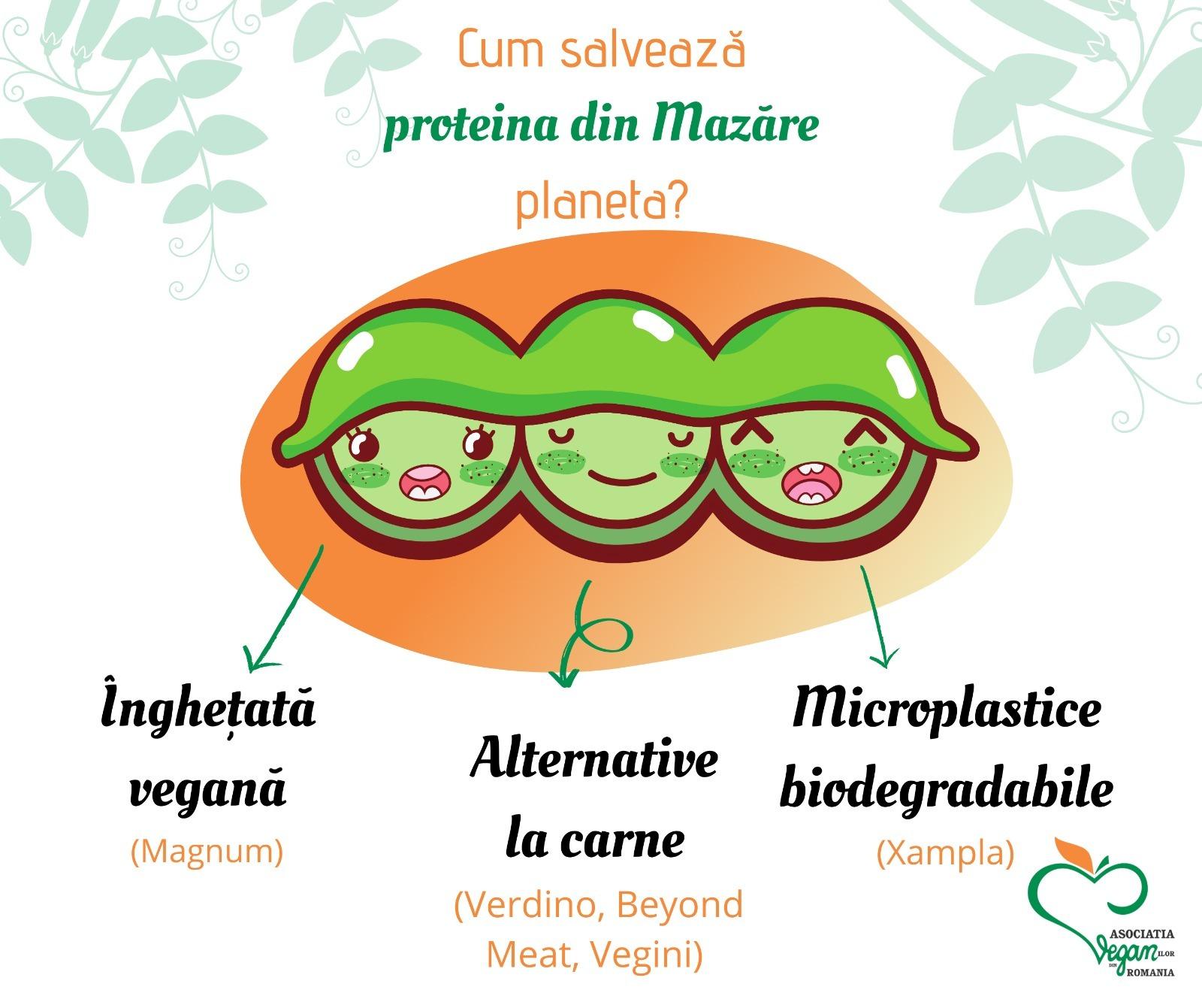 Proteina din mazăre: O mulțime de soluții pentru un viitor mai bun