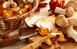 Ciupercile și beneficiile lor